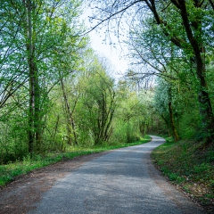 Kloten Countryside
